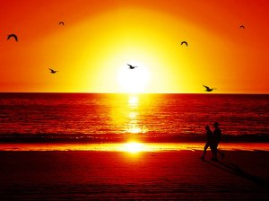 indian summer red_sunset_beach