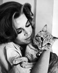 jane fonda with cat