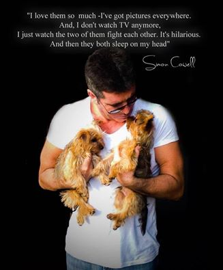BLOG simon cowells 2 dogs VIA LISA CARED4PETS